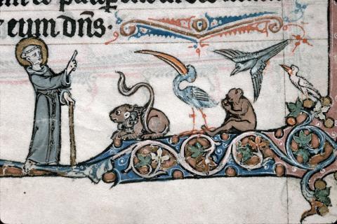 St François parlant aux oiseaux, Marseille, BMVR, Ms. 111, f. 139r (images provenant de la base en ligne enluminure.culture.fr)